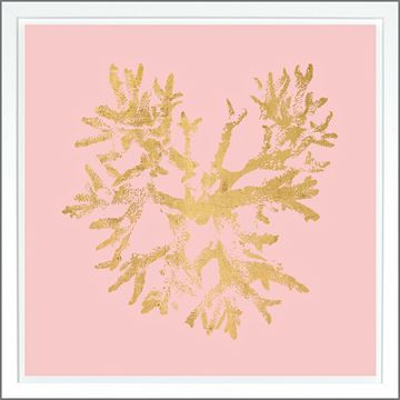 Picture of Coral Pink - Gold