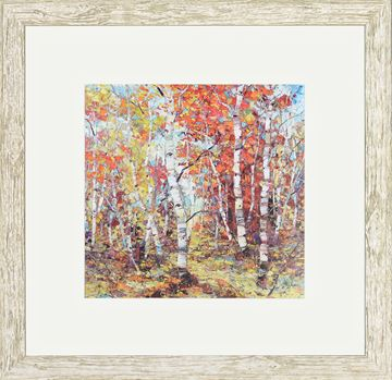 Picture of Birch Colors III - Sml
