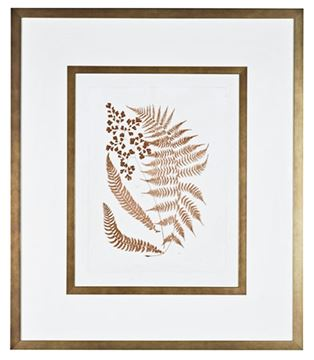 Picture of Sepia Ferns III