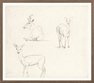 Picture of Collection 07 - Church - Three Deer Sketch - 1850