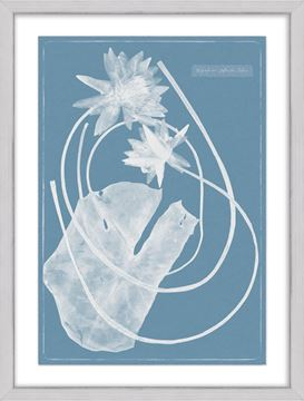 Picture of Cyanotype Water Lilies V