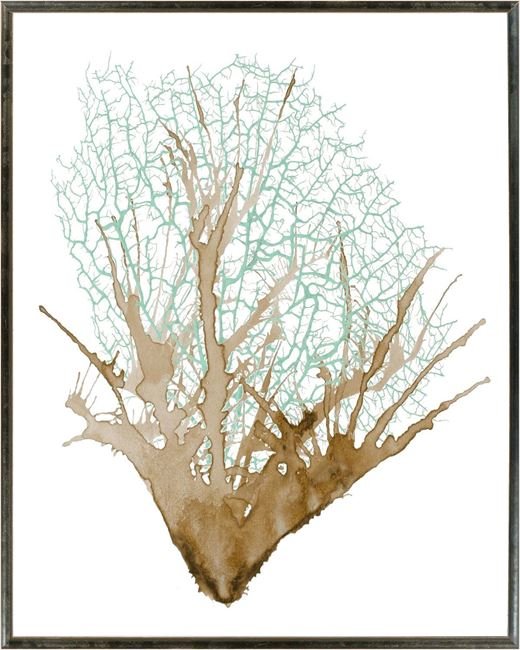 Picture of Spa Coral II - Large