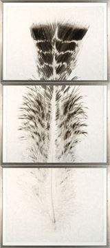 Picture of Taupe Plume I - Triptych