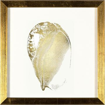 Picture of Gold - Shell IV