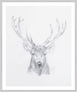Picture of Elk Sketch II