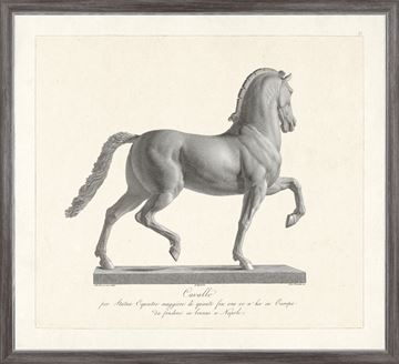 Picture of Cavallo Etching 1812 I - Large
