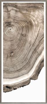 Picture of Live Edge Detail III