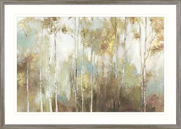Picture of Fine Birch III