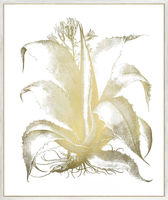 Picture of Gold Foil Aloe II