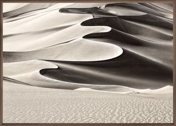 Picture of High Desert Dune - Medium