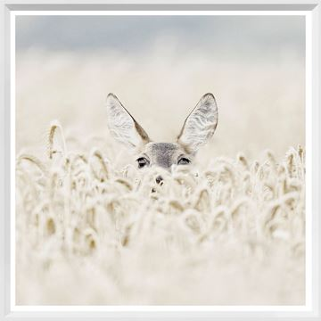 Picture of Mod. Farm - Peekaboo Deer - Mini - White