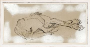 Picture of Study of a Sleeping Dog II - Large